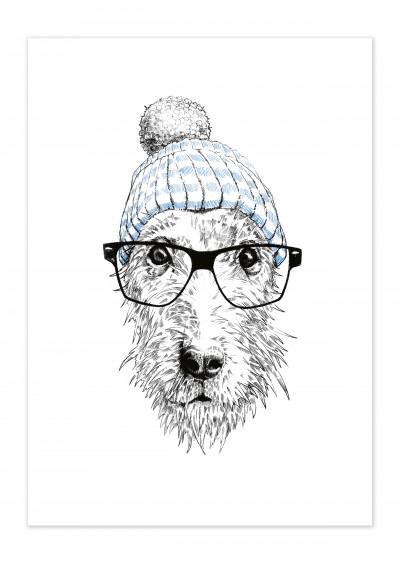 Animal Dog Glasses Poster