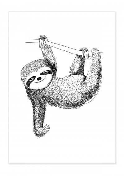 Animal Sloth Poster