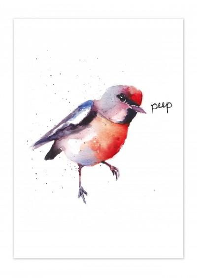 Animal Bird Peep Poster
